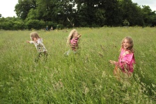 Playing in the Fields