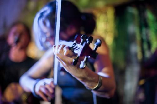 buffos-wake-violin